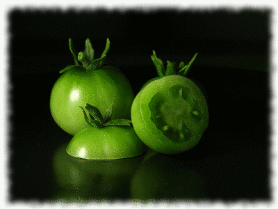 Tomatoes clipart green tomato. Picture food fruit foodfruittomatogreentomatoespicturepnghtml