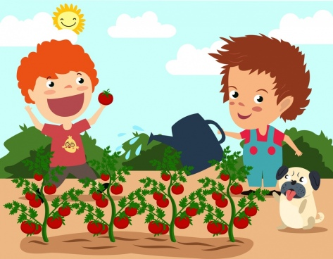 Tomatoes clipart kid. Tomato plant free coloring