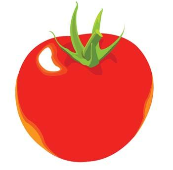 Tomatoes clipart red tomato. At getdrawings com free