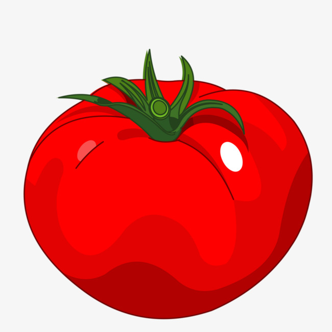 Tomatoes clipart red tomato. Bright cartoon png image
