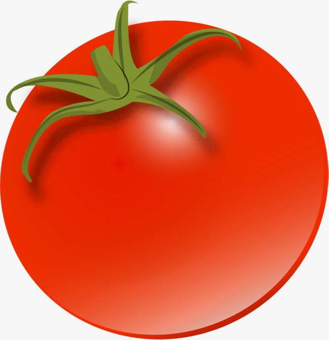 Tomatoes clipart red tomato. Cartoon gules png image