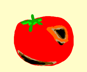 Tomatoes clipart rotten tomato. Drawing by ythar