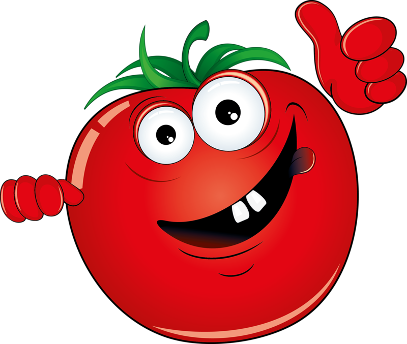 Tomatoes drawing. Vegetable cartoon illustration red