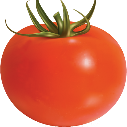 Tomatoes drawing half tomato. Time local food connect