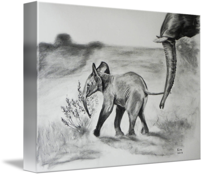 Top drawing charcoal. Baby elephant by kira