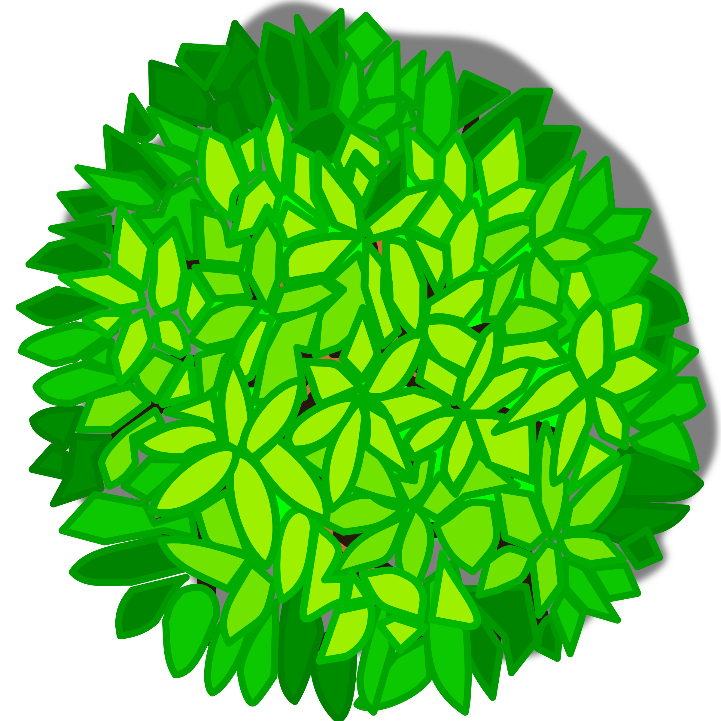 Top view tree png. Clipart big image