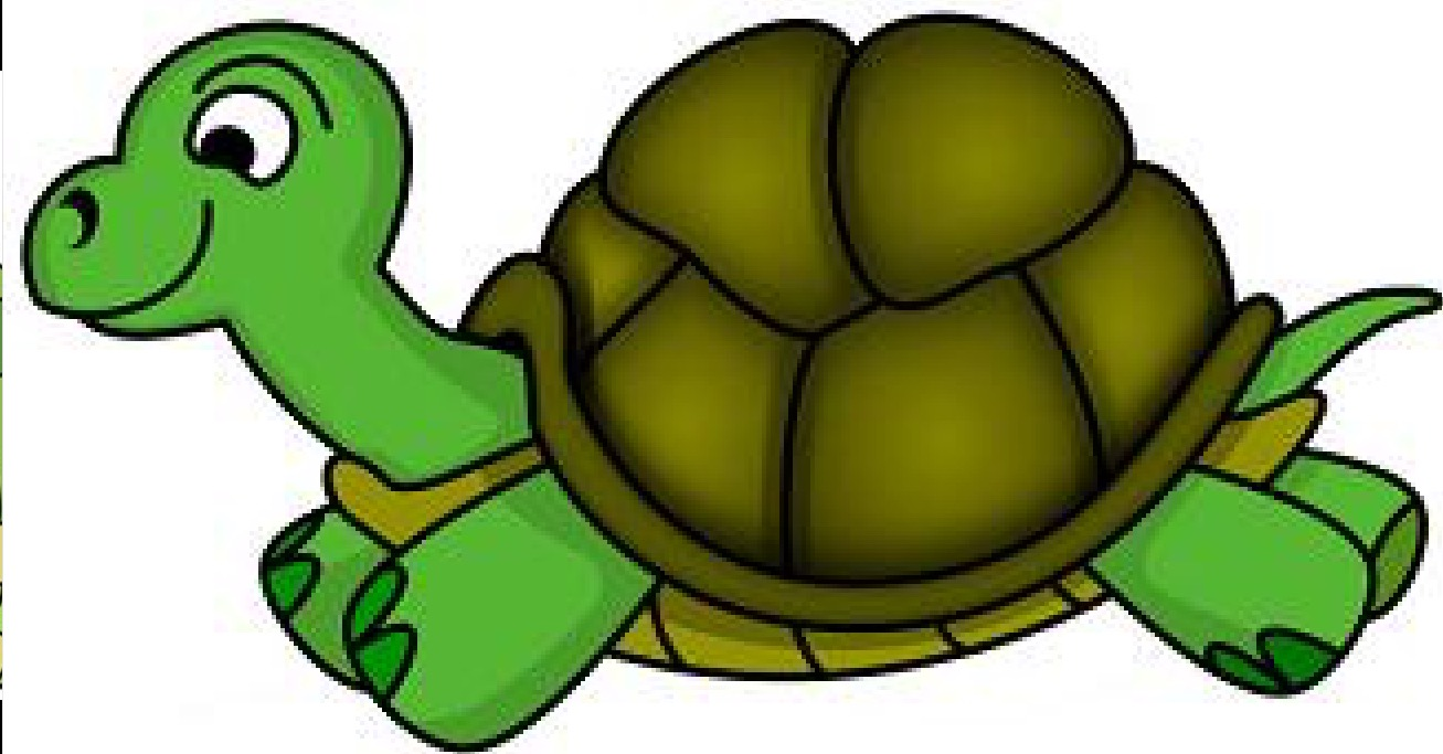 Tortoise clipart. Realistic of typegoodies me