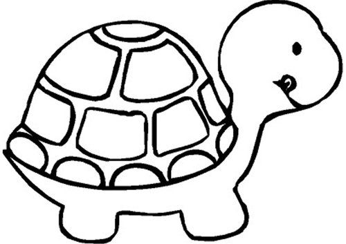 Tortoise clipart coloring. Turtle black and white