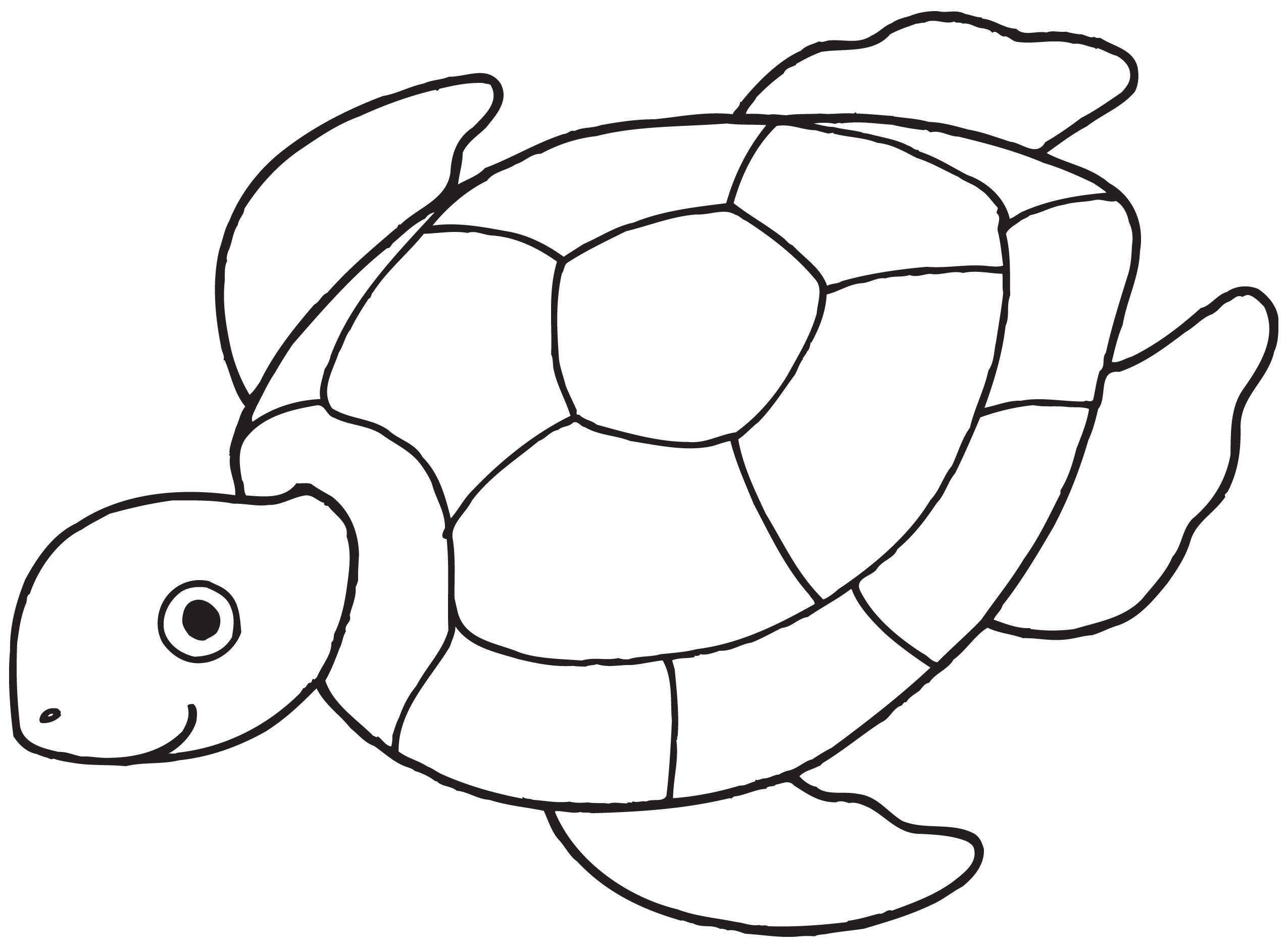 Tortoise clipart coloring. Yertle the turtle pages
