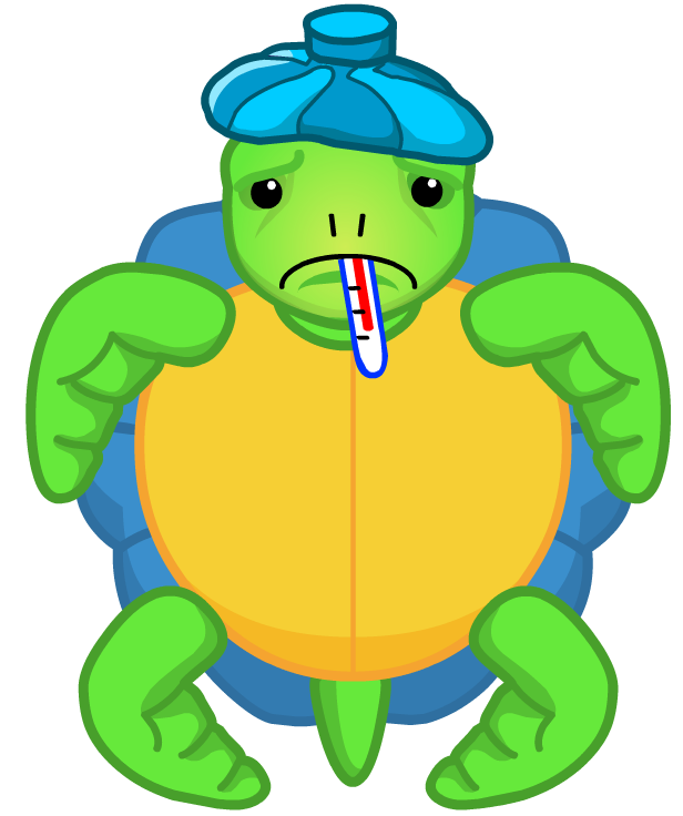 Tortoise clipart sick turtle. File surfin png webkinz