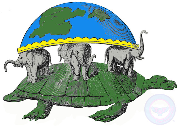 Tortoise clipart sick turtle. Are turtles important the