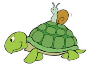 Tortoise clipart sluggish. Cognitive tempo sct add