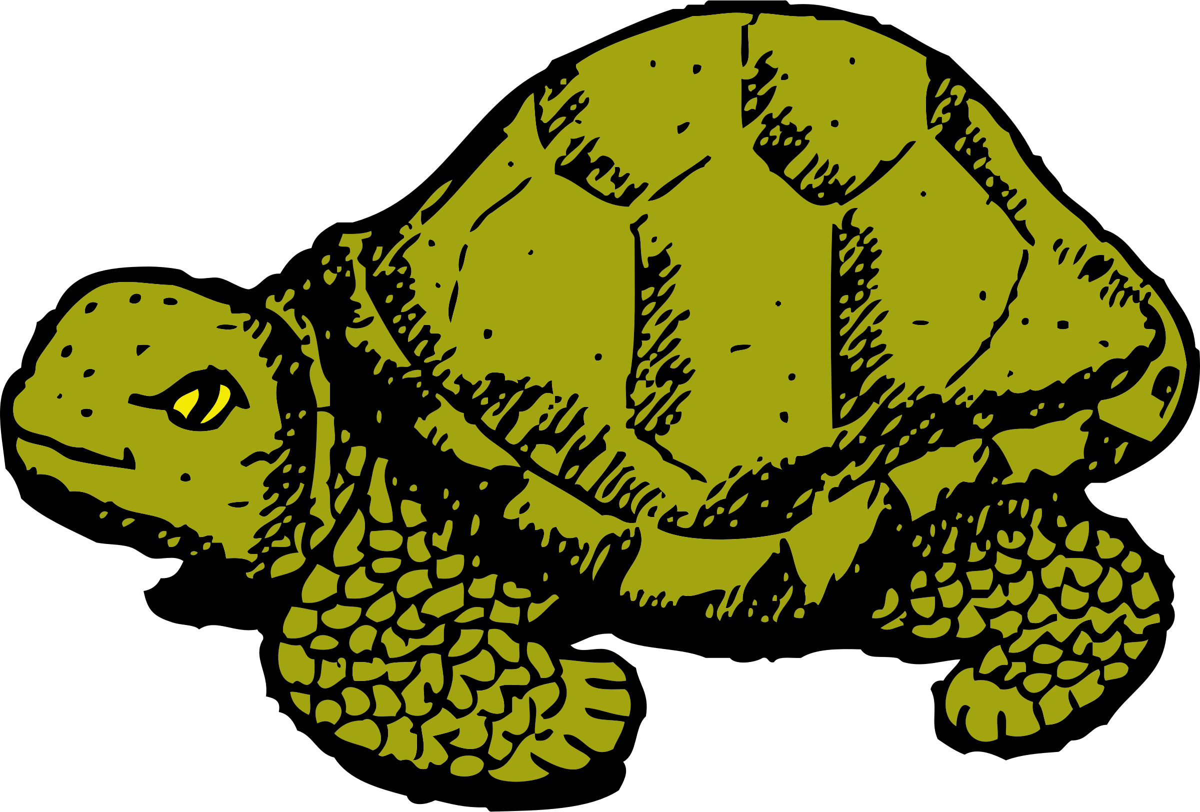 Tortoise vector comic. Icons png free and