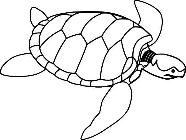 Tortoise vector drawing. Turtle outline clip art