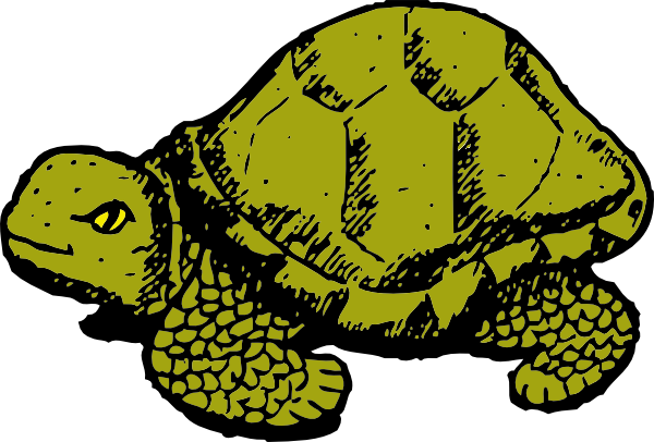 Tortoise vector green. Clip art at clker