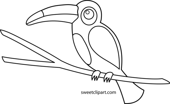 Toucan clipart cute. Coloring page free clip