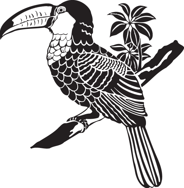 Toucan clipart keel billed. Decal