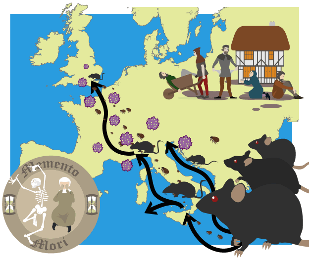 Trade clipart trade route. Map of the black