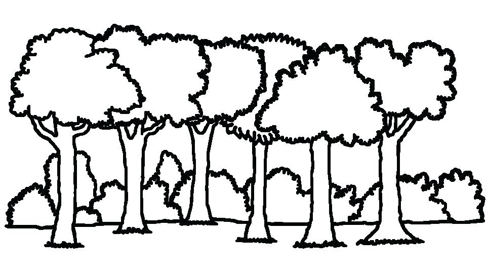 Trail clipart clip art. Top forest walking