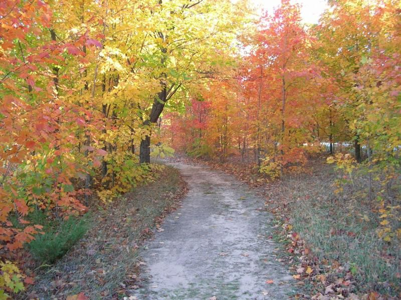 Trail clipart path windy. Fall colors on the