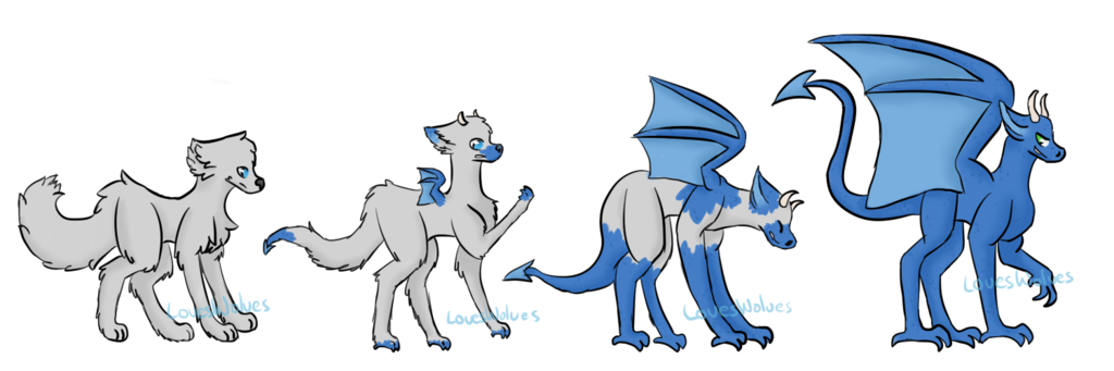 Transformation drawing deviantart. Wolf to dragon tf
