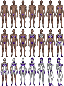 Transformation drawing mtf. Simplified gynoid sequence by