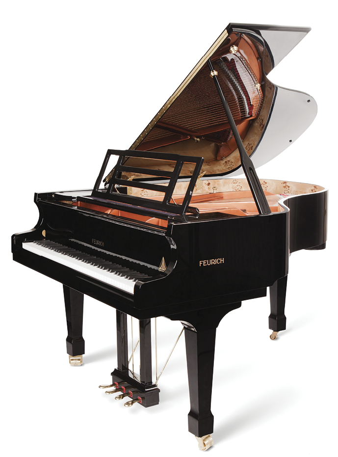 Transition drawing piano key. Review the new feurich