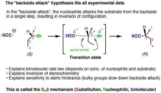 Transition drawing step by. The sn mechanism master
