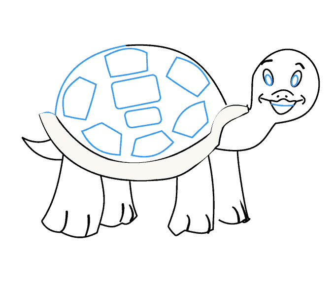 Transition drawing tortoise. How to draw a