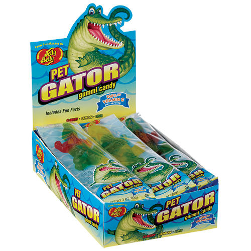 Transparent alligator cold. Jelly belly pet gator