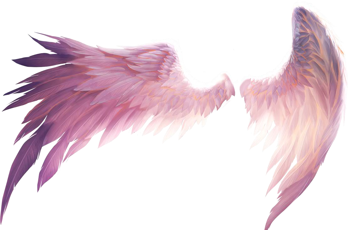 Transparent angel wings png. Angelwings ftestickers report abuse