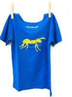 Transparent ant blue. Short sleeve shirt electric
