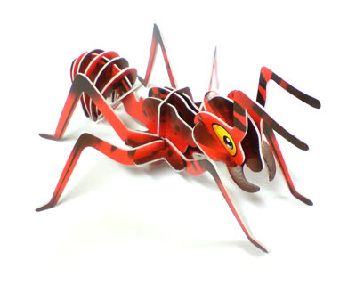 Transparent ant little red. Life in wireframe algoithms