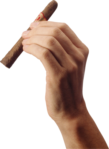 Cigarettes vector hand holding. Cigar isolated stock photo