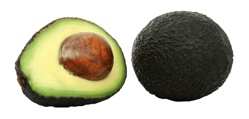 Transparent avocado stock photo. Png free images toppng