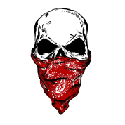 Transparent bandana wearing. Skull with by taz