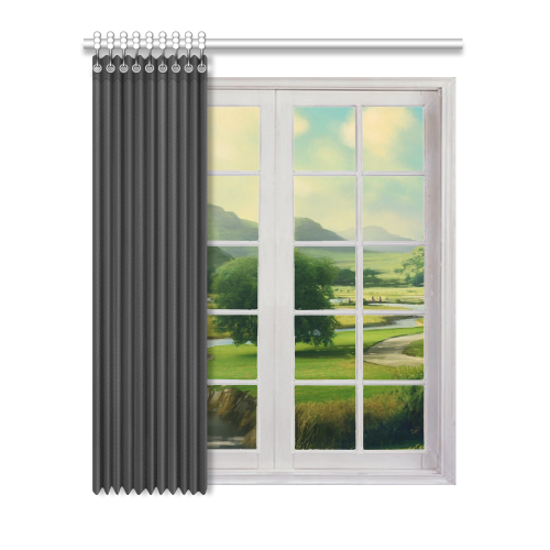 Transparent blinds curtain. Window shades police box