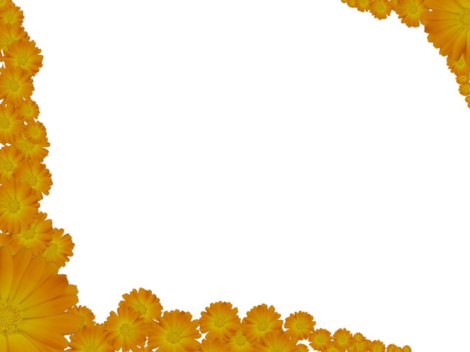 Transparent border png. Two flowery yellow corners