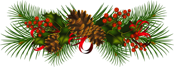 Transparent christmas png. Pine cones clipart gallery