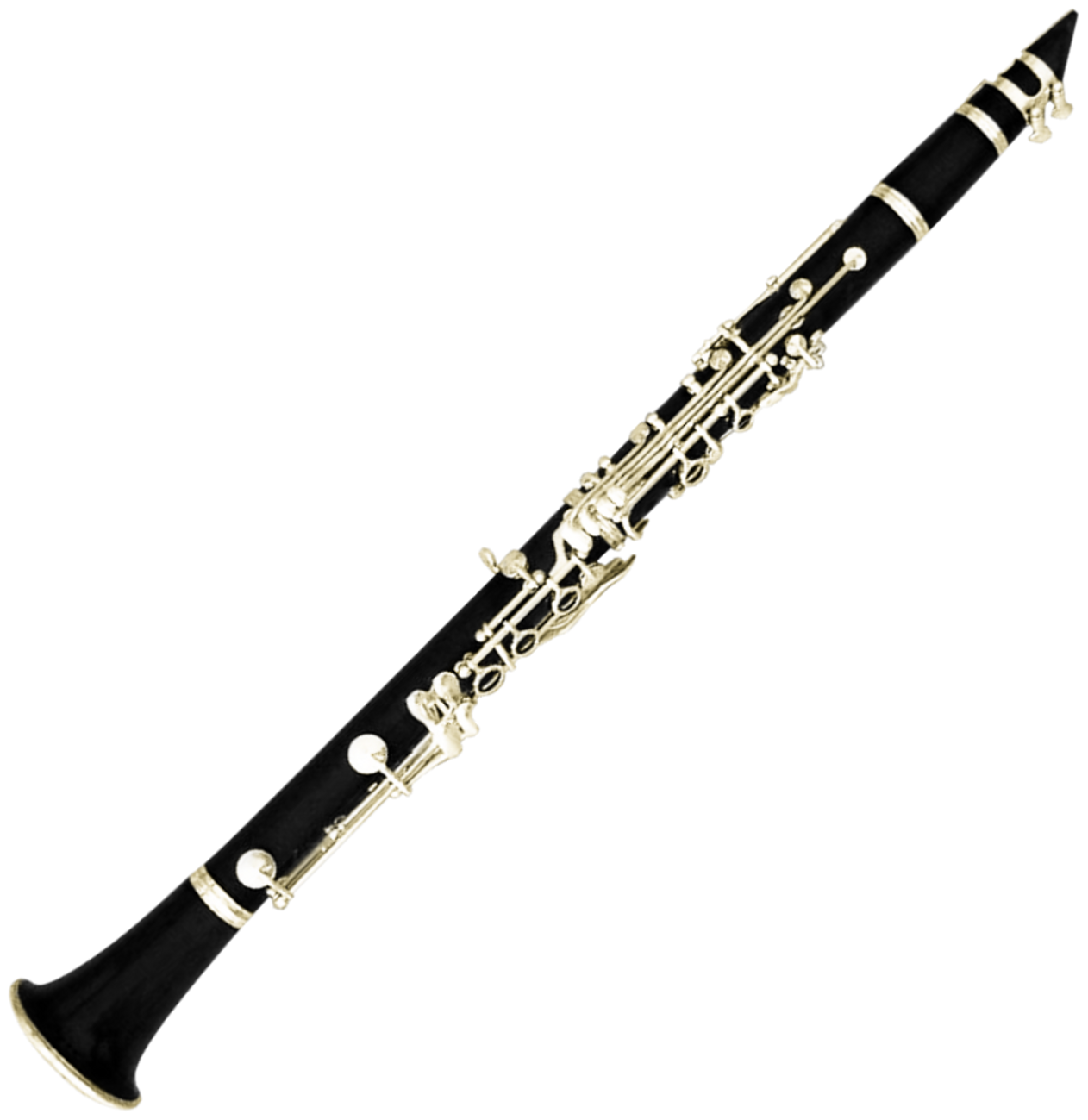transparent clarinet double reed