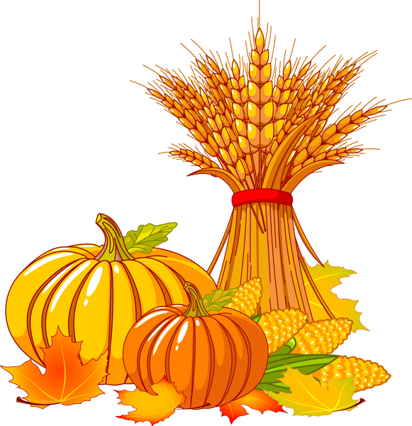 Transparent clipart thanksgiving. Png images free download