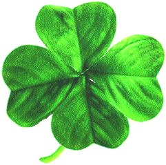 Transparent clover bunga. File four leaved png