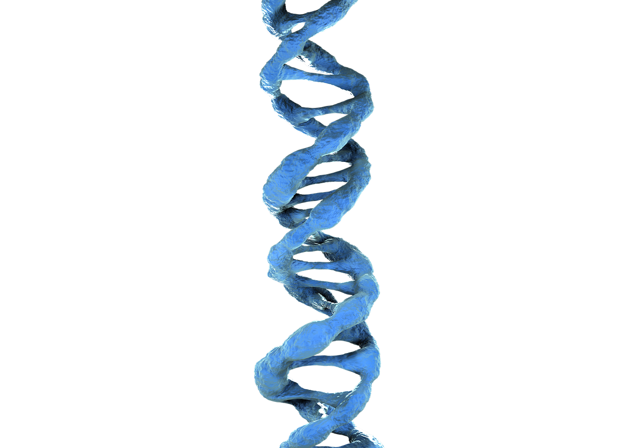 Transparent dna royalty free. D blue pictures photos