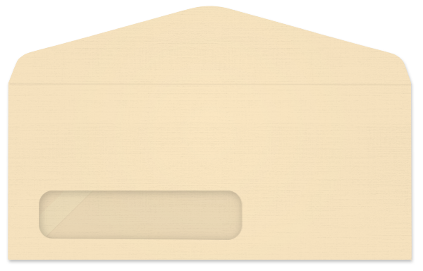 envelope transparent plastic