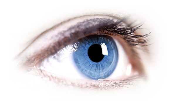 About vutest eyelab accredited. Transparent eye png png download
