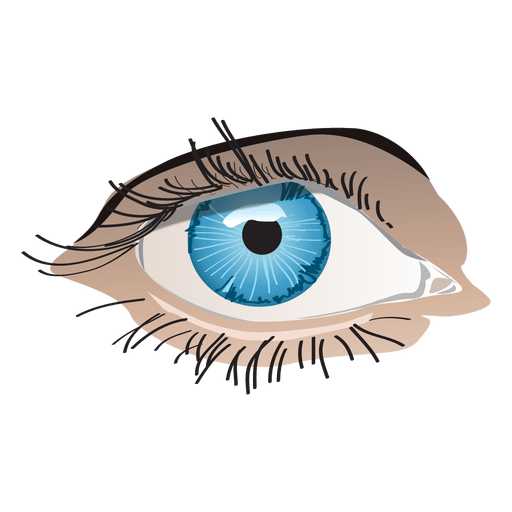 Transparent eye png. Blue woman svg vector