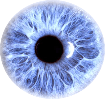 Transparent eye png. Purple stickpng people eyes