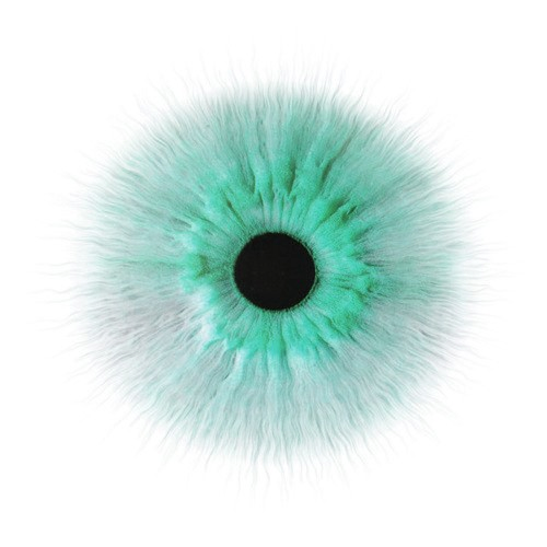 Transparent eye png. Wizrrd