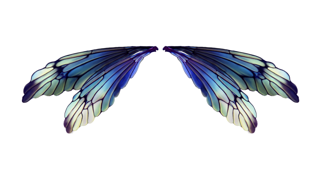 Transparent fairy wing. Fairies wings by lilifilane