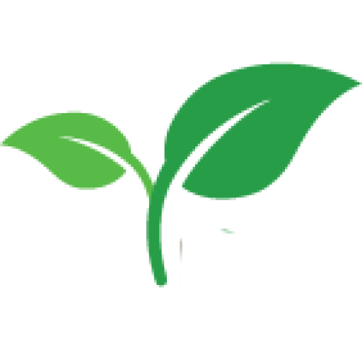 Transparent favicons plant. How to grow potatoes